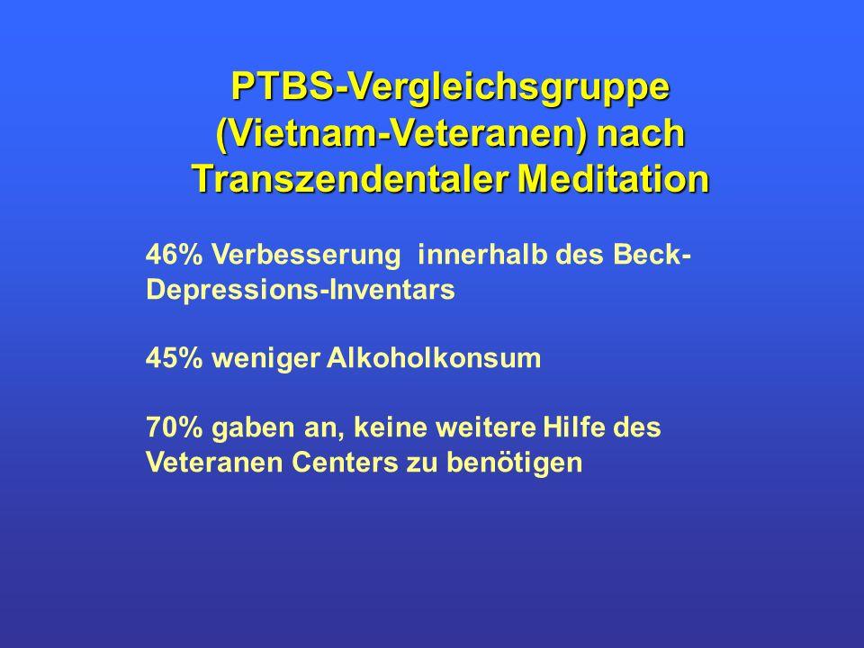 46% Verbesserung innerhalb des Beck- Depressions-Inventars 45% weniger Alkoholkonsum 70% gaben an, keine weitere Hilfe des Veteranen Centers zu benöti