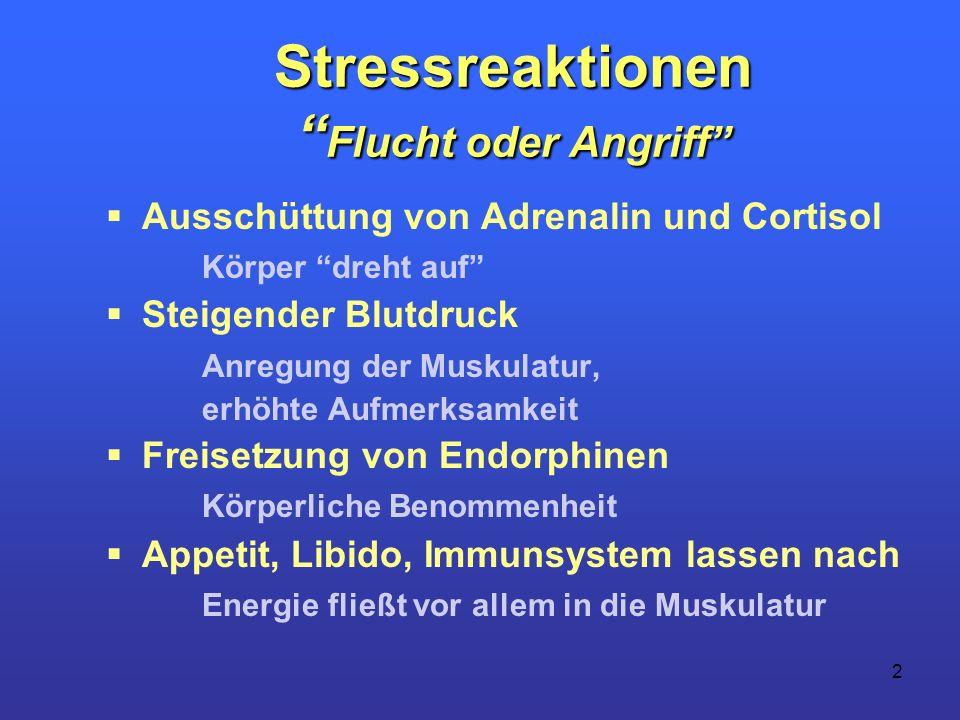2 Stressreaktionen Flucht oder Angriff Ausschüttung von Adrenalin und Cortisol Körper dreht auf Steigender Blutdruck Anregung der Muskulatur, erhöhte