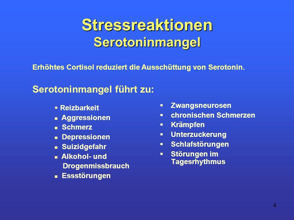 4 Stressreaktionen Serotoninmangel Zwangsneurosen chronischen Schmerzen Krämpfen Unterzuckerung Schlafstörungen Störungen im Tagesrhythmus Reizbarkeit