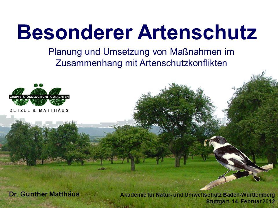 Akademie für Natur- und Umweltschutz Baden-Württemberg Stuttgart, 14. Februar 2012 Dr. Gunther Matthäus D E T Z E L & M A T T H Ä U S Besonderer Arten