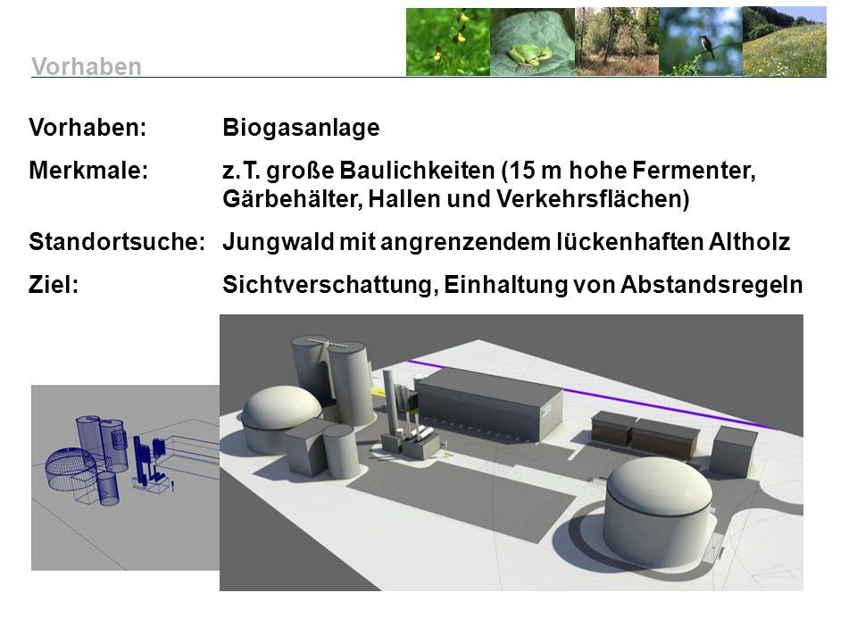 Vorhaben: Biogasanlage Merkmale:z.T. große Baulichkeiten (15 m hohe Fermenter, Gärbehälter, Hallen und Verkehrsflächen) Standortsuche: Jungwald mit an