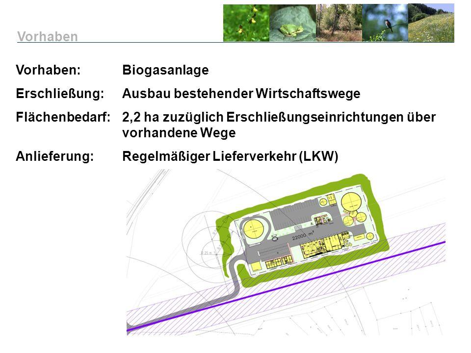 Vorhaben: Biogasanlage Erschließung:Ausbau bestehender Wirtschaftswege Flächenbedarf: 2,2 ha zuzüglich Erschließungseinrichtungen über vorhandene Wege