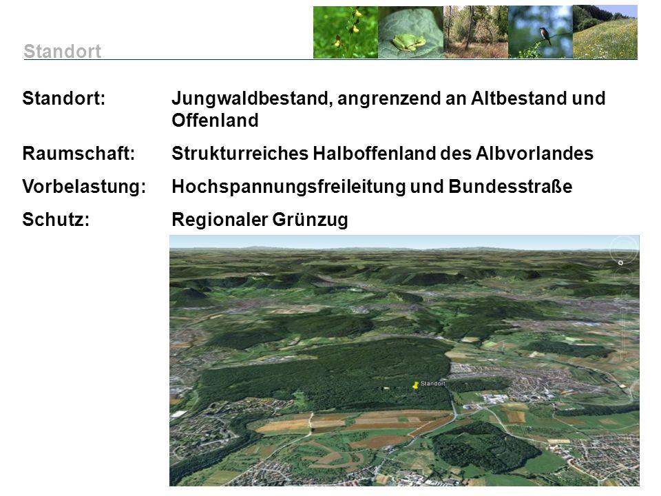 Standort: Jungwaldbestand, angrenzend an Altbestand und Offenland Raumschaft:Strukturreiches Halboffenland des Albvorlandes Vorbelastung:Hochspannungs