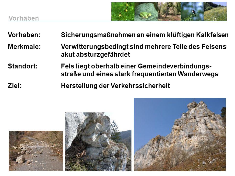 Vorhaben: Sicherungsmaßnahmen an einem klüftigen Kalkfelsen Merkmale:Verwitterungsbedingt sind mehrere Teile des Felsens akut absturzgefährdet Standor
