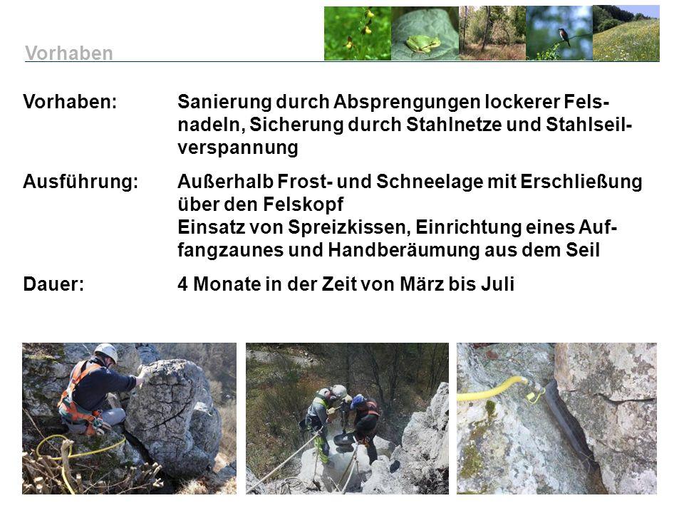 Vorhaben: Sanierung durch Absprengungen lockerer Fels- nadeln, Sicherung durch Stahlnetze und Stahlseil- verspannung Ausführung:Außerhalb Frost- und S