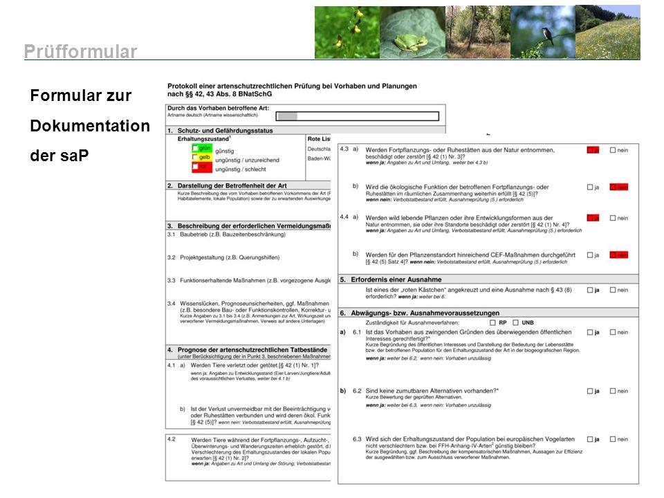 Formular zur Dokumentation der saP Prüfformular
