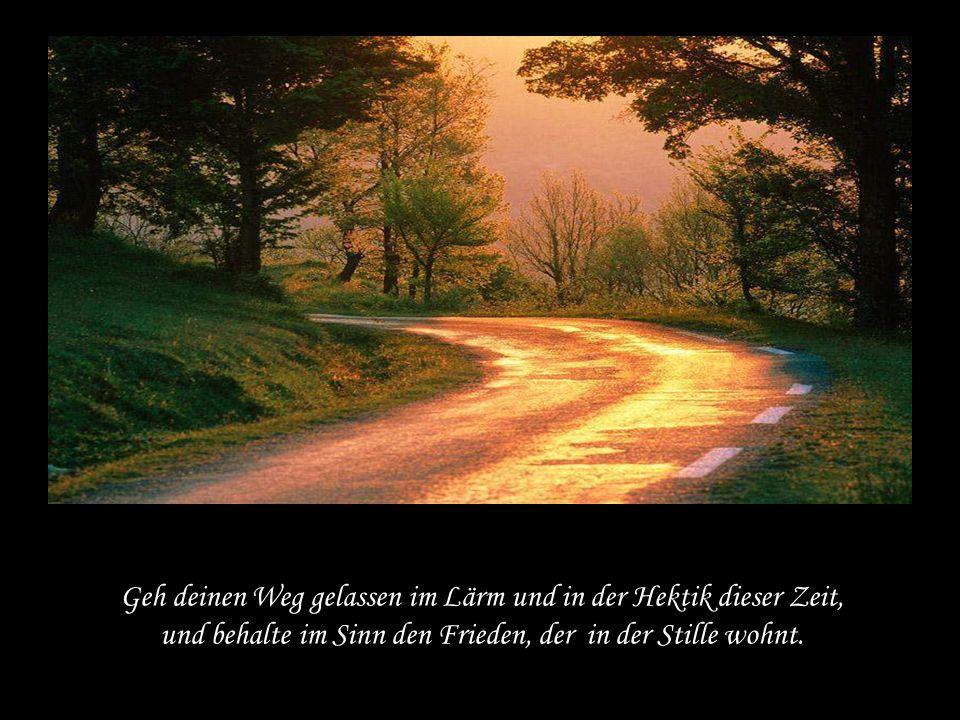 Geh deinen Weg gelassen im Lärm und in der Hektik dieser Zeit, und behalte im Sinn den Frieden, der in der Stille wohnt.