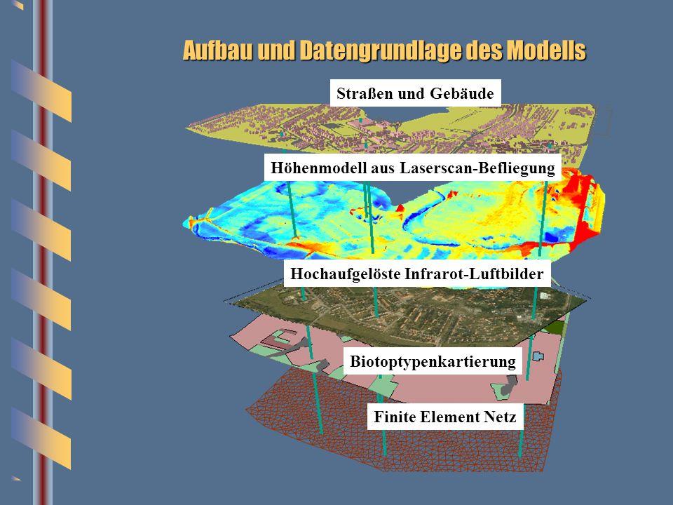 Aufbau und Datengrundlage des Modells Straßen und Gebäude Höhenmodell aus Laserscan-Befliegung Hochaufgelöste Infrarot-Luftbilder Biotoptypenkartierun