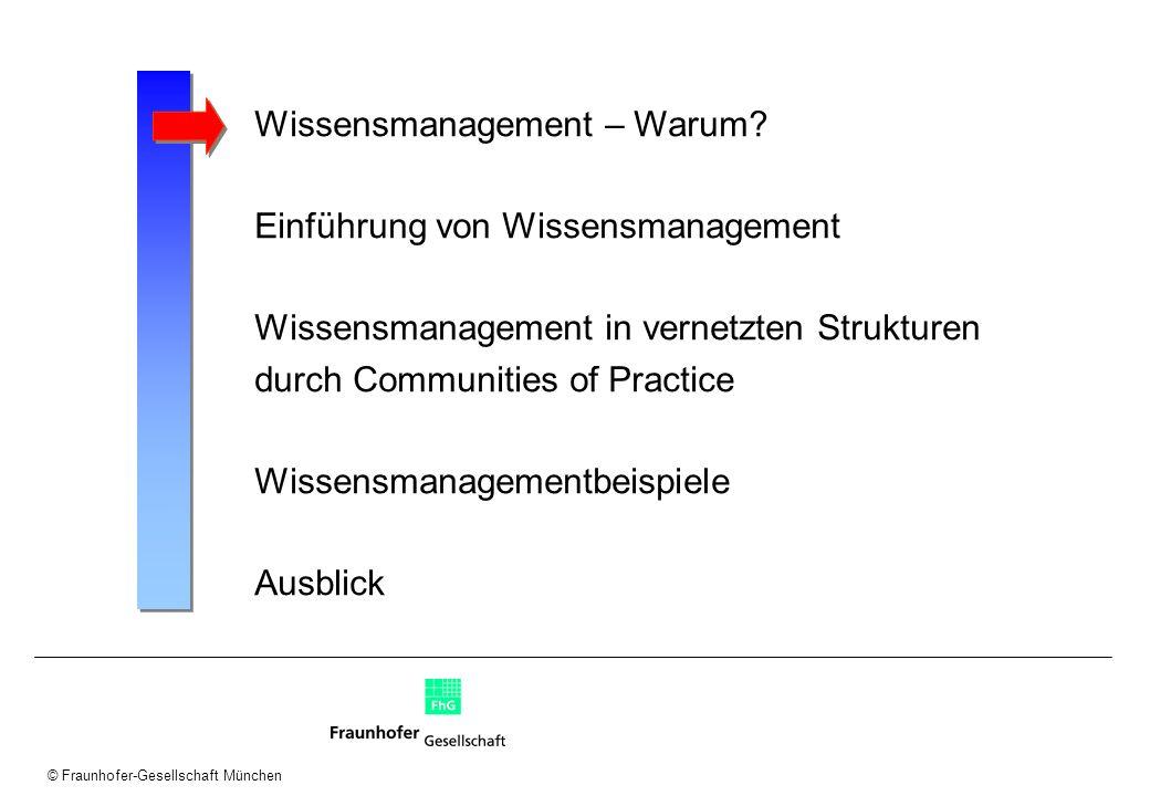 © Fraunhofer-Gesellschaft München Wissensmatrix: Projektplanung/ Beratungswissen Organisation Wissens- identifikation...