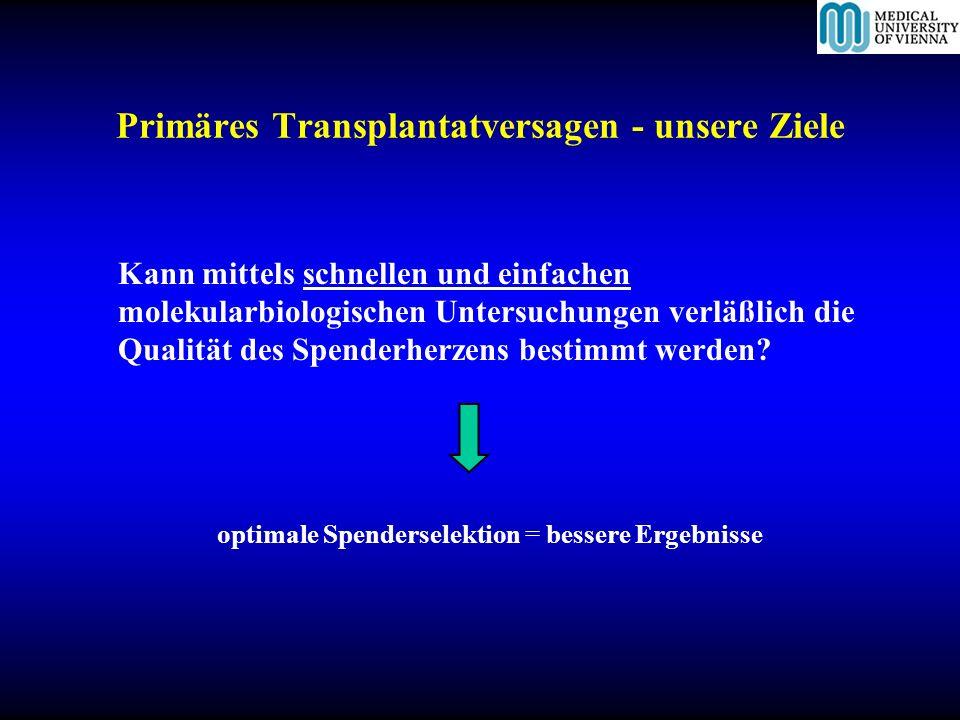 Primäres Transplantatversagen - Studienergebnisse 1.