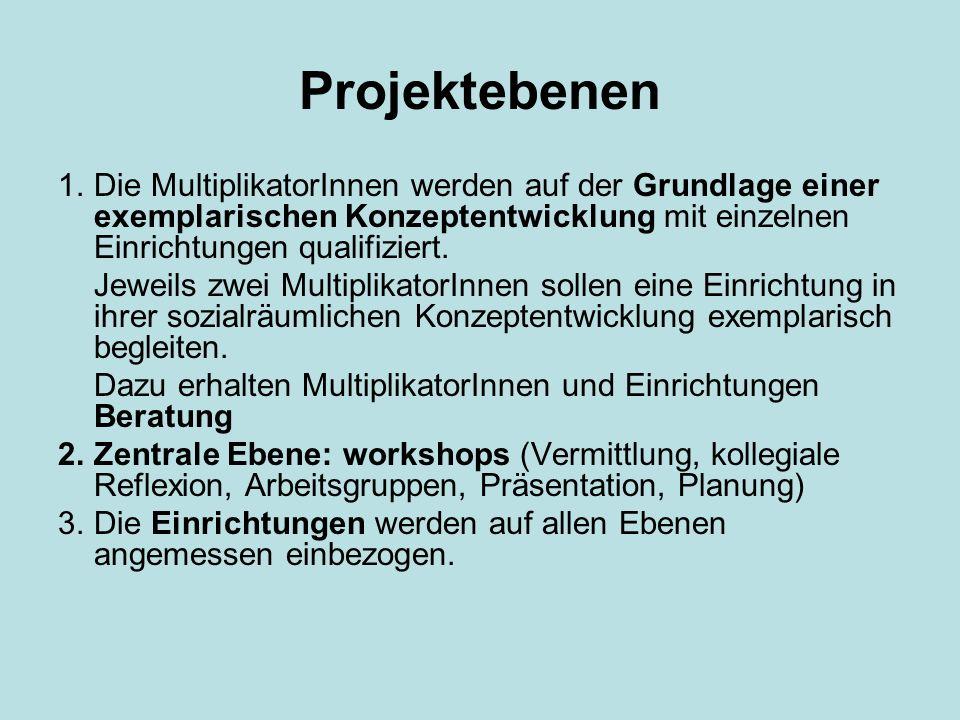 Projektebenen 1.Die MultiplikatorInnen werden auf der Grundlage einer exemplarischen Konzeptentwicklung mit einzelnen Einrichtungen qualifiziert. Jewe