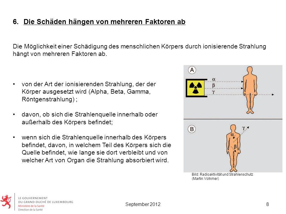 von der Art der ionisierenden Strahlung, der der Körper ausgesetzt wird (Alpha, Beta, Gamma, Röntgenstrahlung) ; davon, ob sich die Strahlenquelle inn