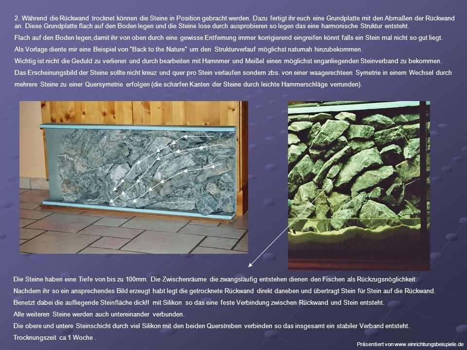 2. Während die Rückwand trocknet können die Steine in Position gebracht werden.