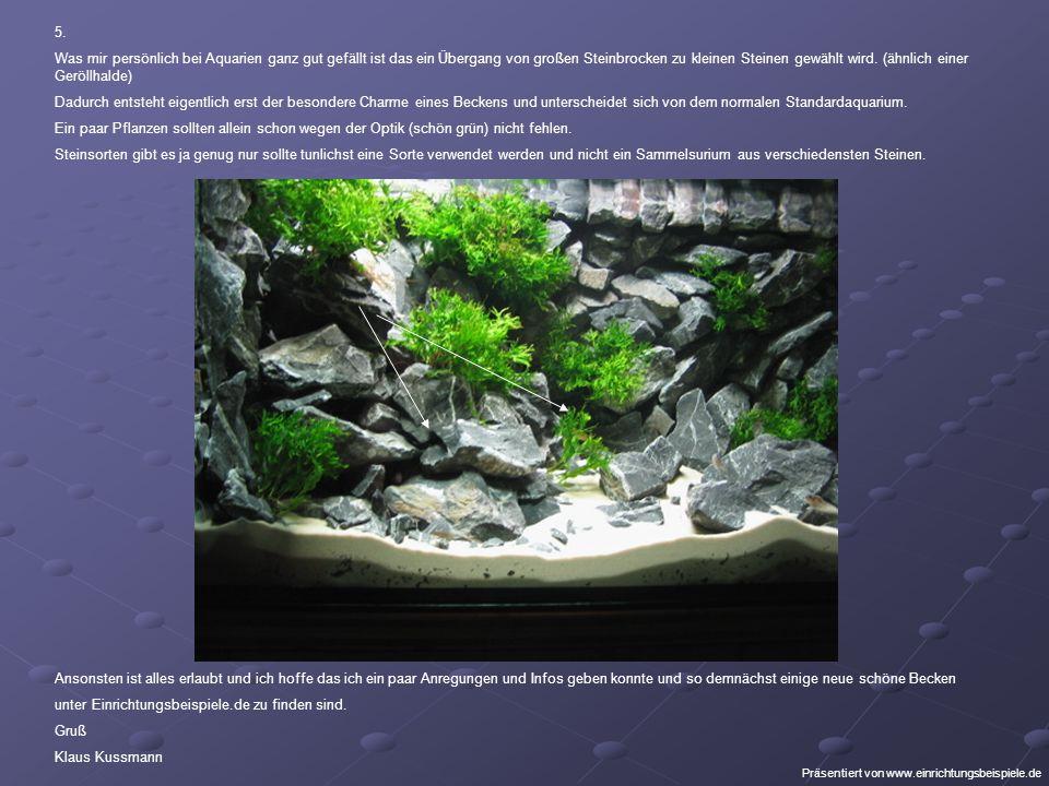 5. Was mir persönlich bei Aquarien ganz gut gefällt ist das ein Übergang von großen Steinbrocken zu kleinen Steinen gewählt wird. (ähnlich einer Geröl