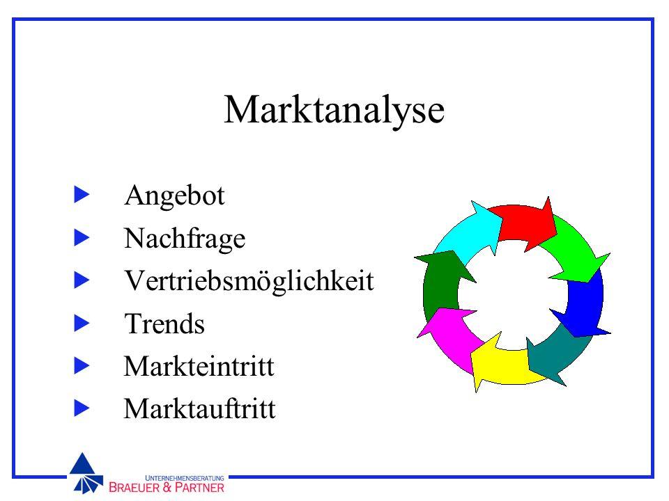Marktanalyse Angebot Nachfrage Vertriebsmöglichkeit Trends Markteintritt Marktauftritt