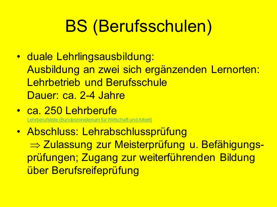 BS (Berufsschulen) duale Lehrlingsausbildung: Ausbildung an zwei sich ergänzenden Lernorten: Lehrbetrieb und Berufsschule Dauer: ca. 2-4 Jahre ca. 250