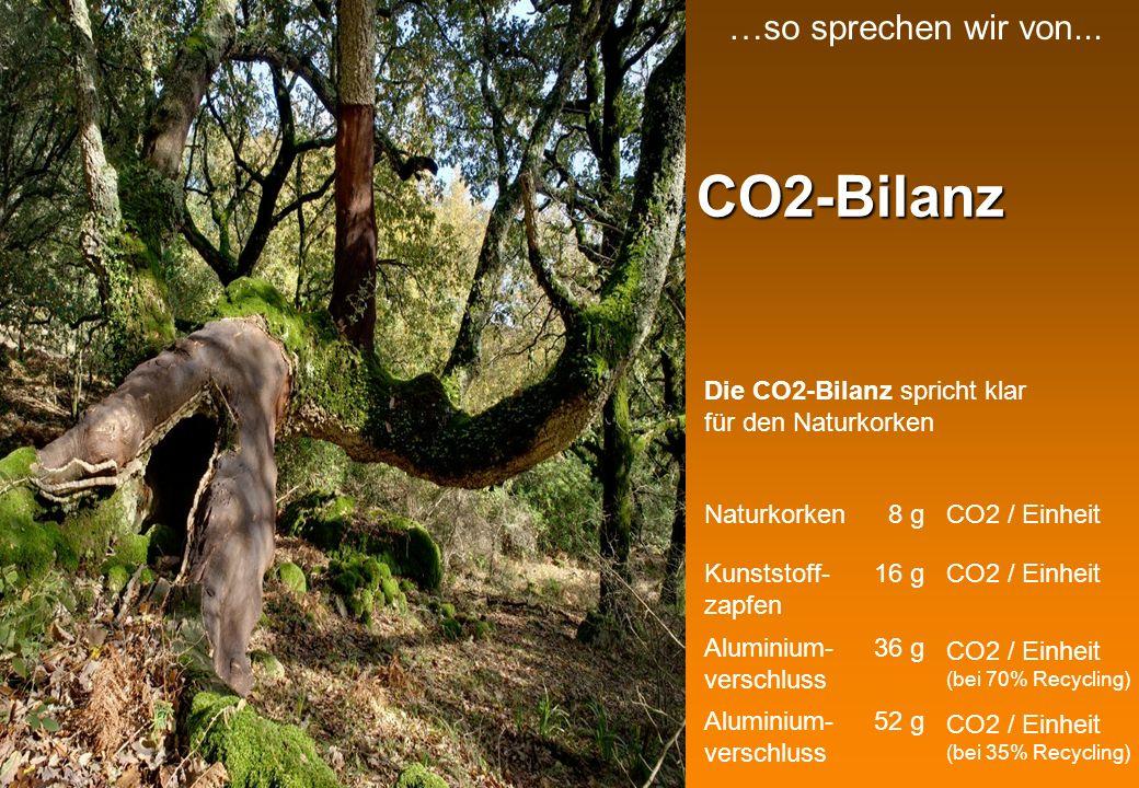 Korkzapfen in der Schweiz In der Schweiz werden jährlich rund 150000000 Korkzapfen verwendet Dies sind rund 400 Tonnen Kork pro Jahr Diese Menge produzieren jährlich 15-20000 Korkeichen… … oder rund 1.5 km 2 Korkeichenwälder …so sprechen wir von...
