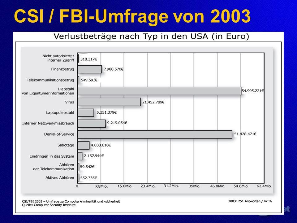 CSI / FBI-Umfrage von 2003