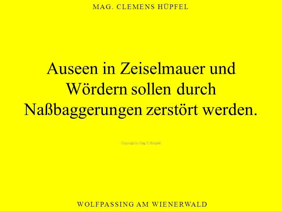 MAG. CLEMENS HÜPFEL WOLFPASSING AM WIENERWALD Auseen in Zeiselmauer und Wördern sollen durch Naßbaggerungen zerstört werden. Copyright by Mag. C. Huüp