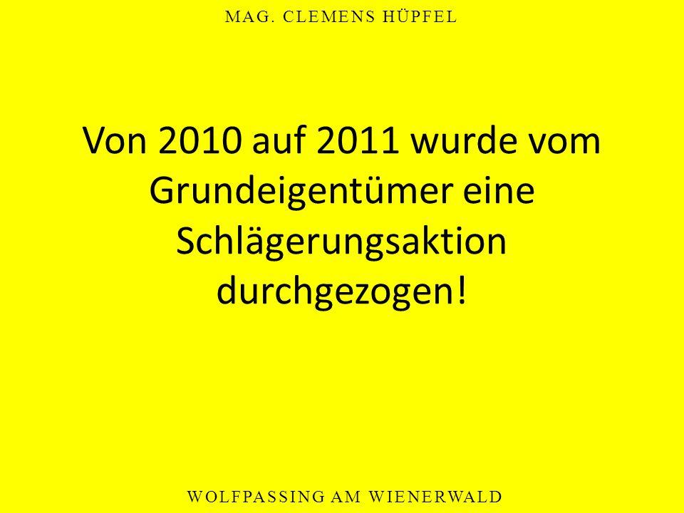 MAG. CLEMENS HÜPFEL WOLFPASSING AM WIENERWALD Von 2010 auf 2011 wurde vom Grundeigentümer eine Schlägerungsaktion durchgezogen!