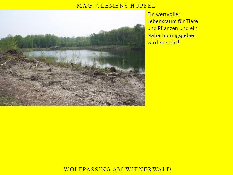 MAG. CLEMENS HÜPFEL WOLFPASSING AM WIENERWALD Ein wertvoller Lebensraum für Tiere und Pflanzen und ein Naherholungsgebiet wird zerstört!