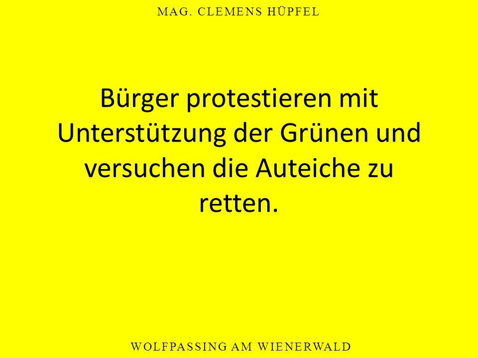 MAG. CLEMENS HÜPFEL WOLFPASSING AM WIENERWALD Bürger protestieren mit Unterstützung der Grünen und versuchen die Auteiche zu retten.