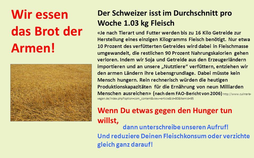 Wir essen das Brot der Armen! Der Schweizer isst im Durchschnitt pro Woche 1.03 kg Fleisch «Je nach Tierart und Futter werden bis zu 16 Kilo Getreide