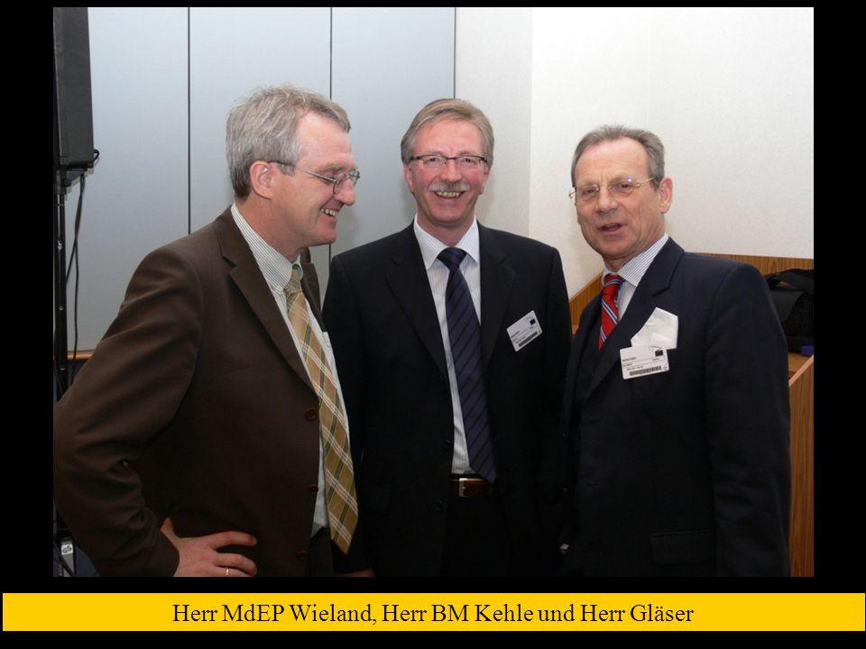 Herr MdEP Wieland, Herr BM Kehle und Herr Gläser