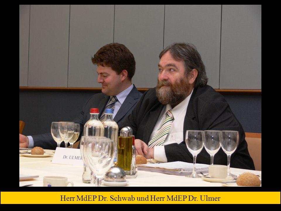 Herr MdEP Dr. Schwab und Herr MdEP Dr. Ulmer