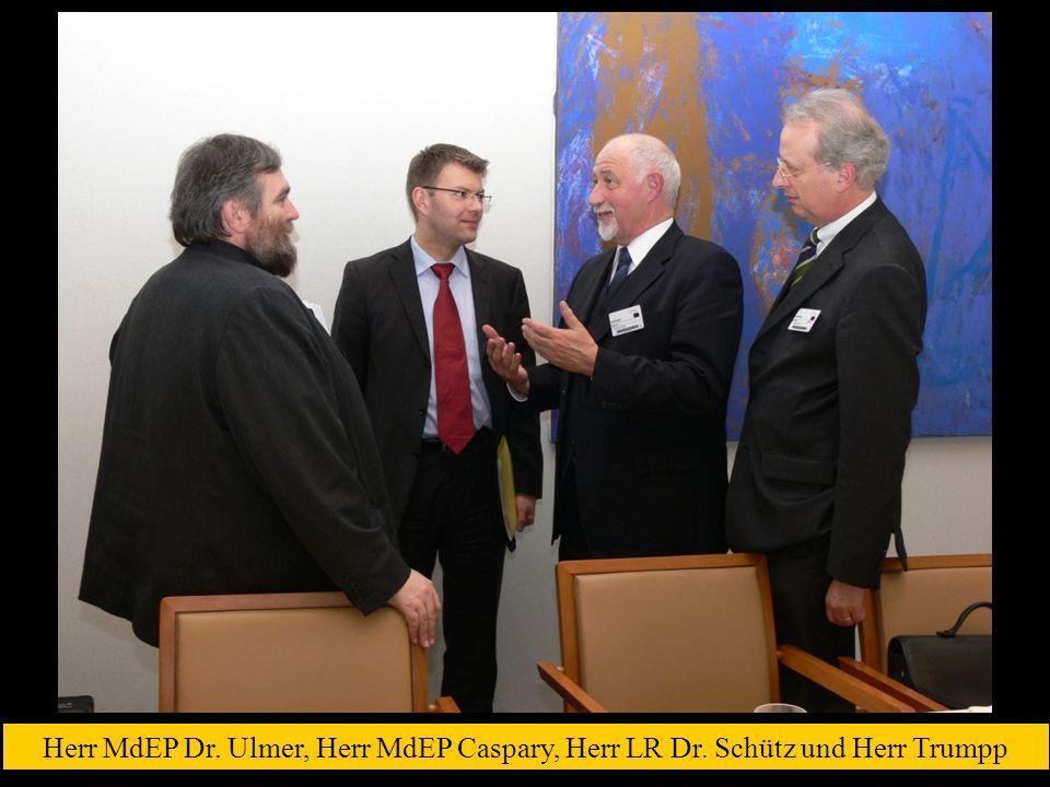 Herr MdEP Dr. Ulmer, Herr MdEP Caspary, Herr LR Dr. Schütz und Herr Trumpp