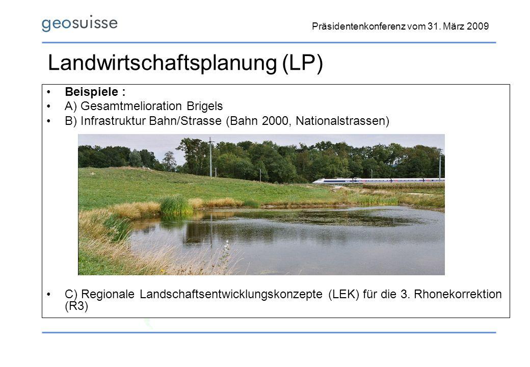 Präsidentenkonferenz vom 31. März 2009 Landwirtschaftsplanung (LP) Beispiele : A) Gesamtmelioration Brigels B) Infrastruktur Bahn/Strasse (Bahn 2000,