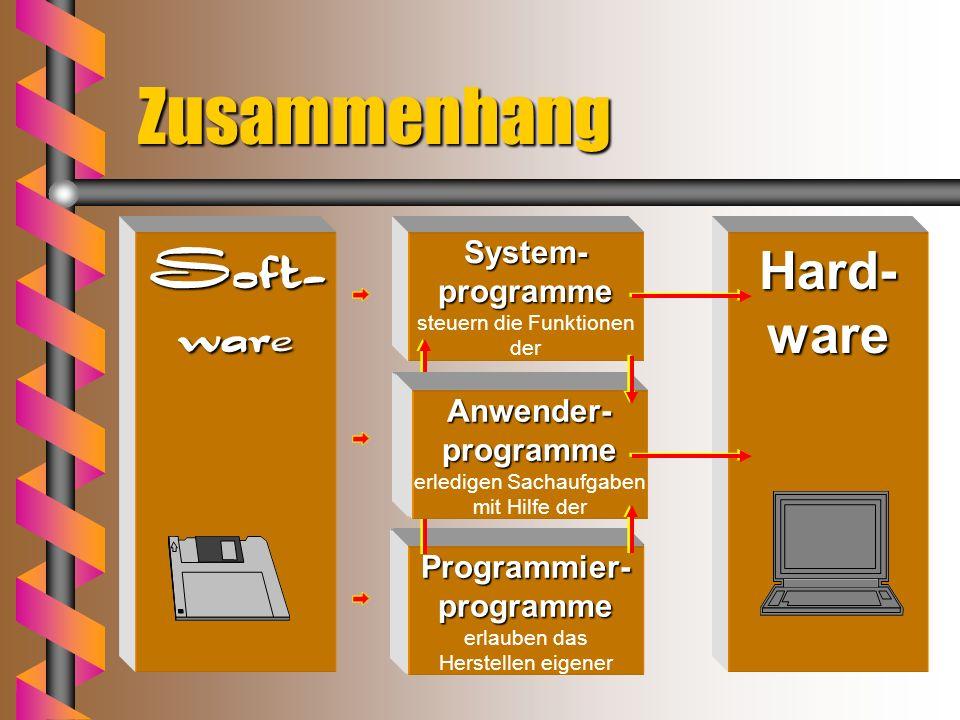 Daten, Dateien, Programme Dateien enthalten vom Anwender mit Hilfe von Programmen erzeugte Daten. enthalten Arbeitsanweisungen an den Computer (Progra