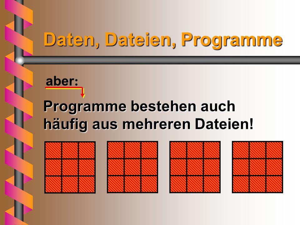 Dies ist ein Programm. Dies ist auch eine Datei. Und das sind Daten in der Programmdatei Daten, Dateien, Programme Beispiel