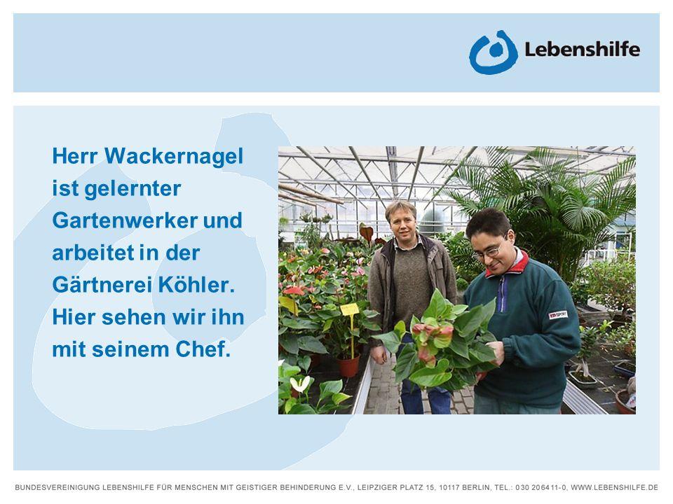 Herr Wackernagel ist gelernter Gartenwerker und arbeitet in der Gärtnerei Köhler. Hier sehen wir ihn mit seinem Chef.