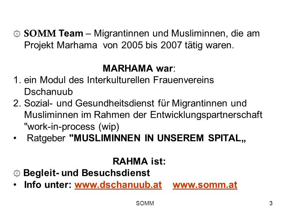 SOMM3 ۞ SOMM Team – Migrantinnen und Musliminnen, die am Projekt Marhama von 2005 bis 2007 tätig waren. MARHAMA war: 1.ein Modul des Interkulturellen