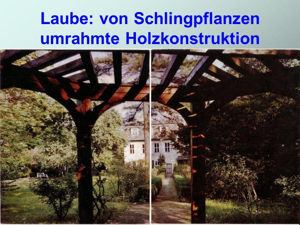Laube: von Schlingpflanzen umrahmte Holzkonstruktion
