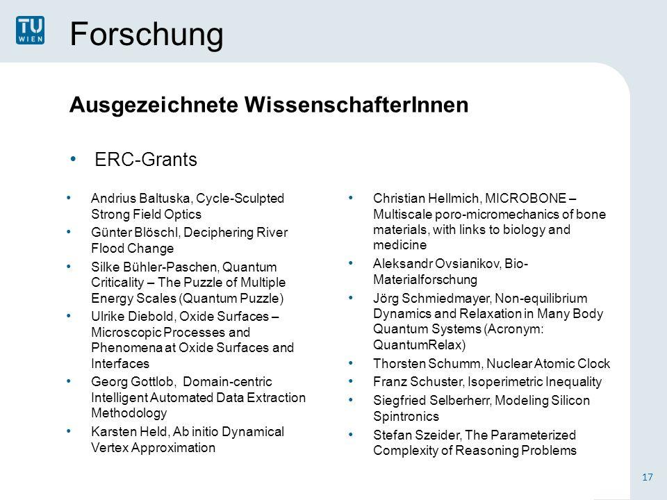Forschung Ausgezeichnete WissenschafterInnen ERC-Grants 17 Christian Hellmich, MICROBONE – Multiscale poro-micromechanics of bone materials, with link