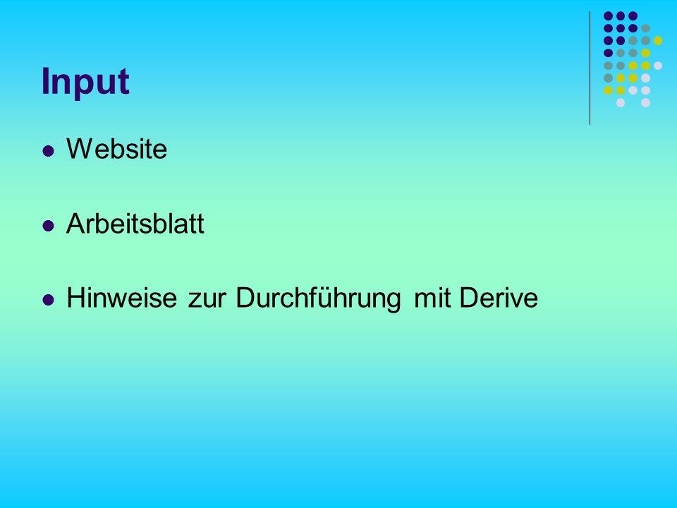 Input Website Arbeitsblatt Hinweise zur Durchführung mit Derive
