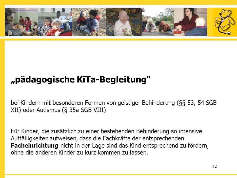 12 pädagogische KiTa-Begleitung bei Kindern mit besonderen Formen von geistiger Behinderung (§§ 53, 54 SGB XII) oder Autismus (§ 35a SGB VIII) Für Kin