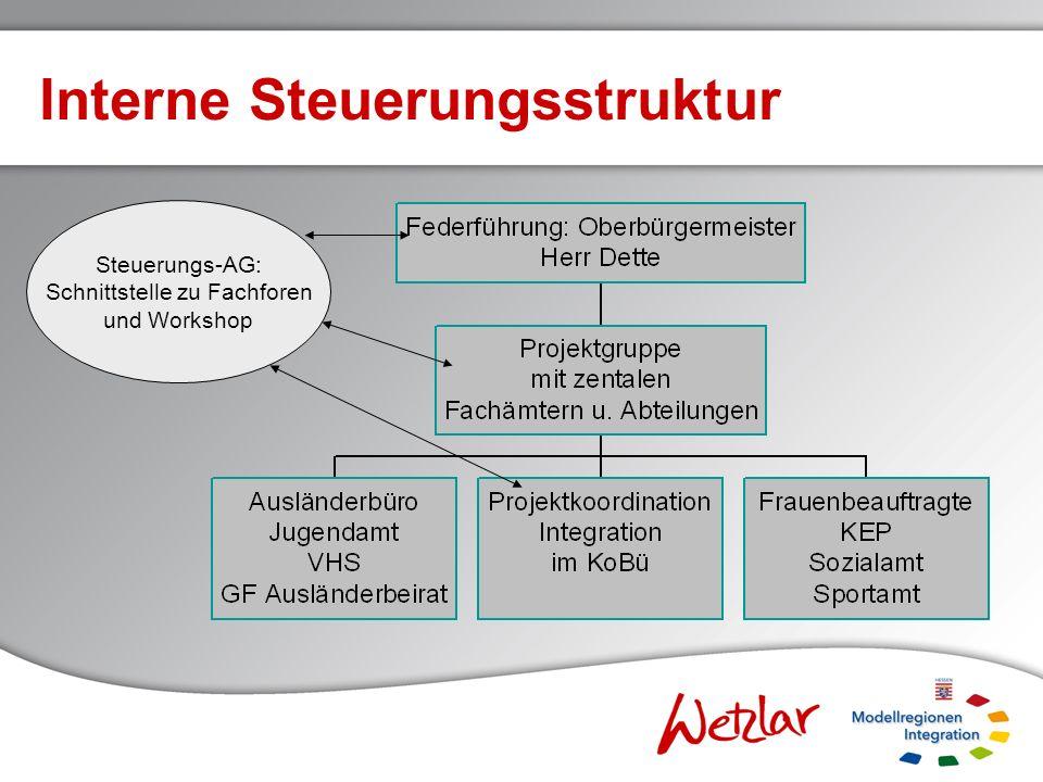 Interne Steuerungsstruktur Steuerungs-AG: Schnittstelle zu Fachforen und Workshop