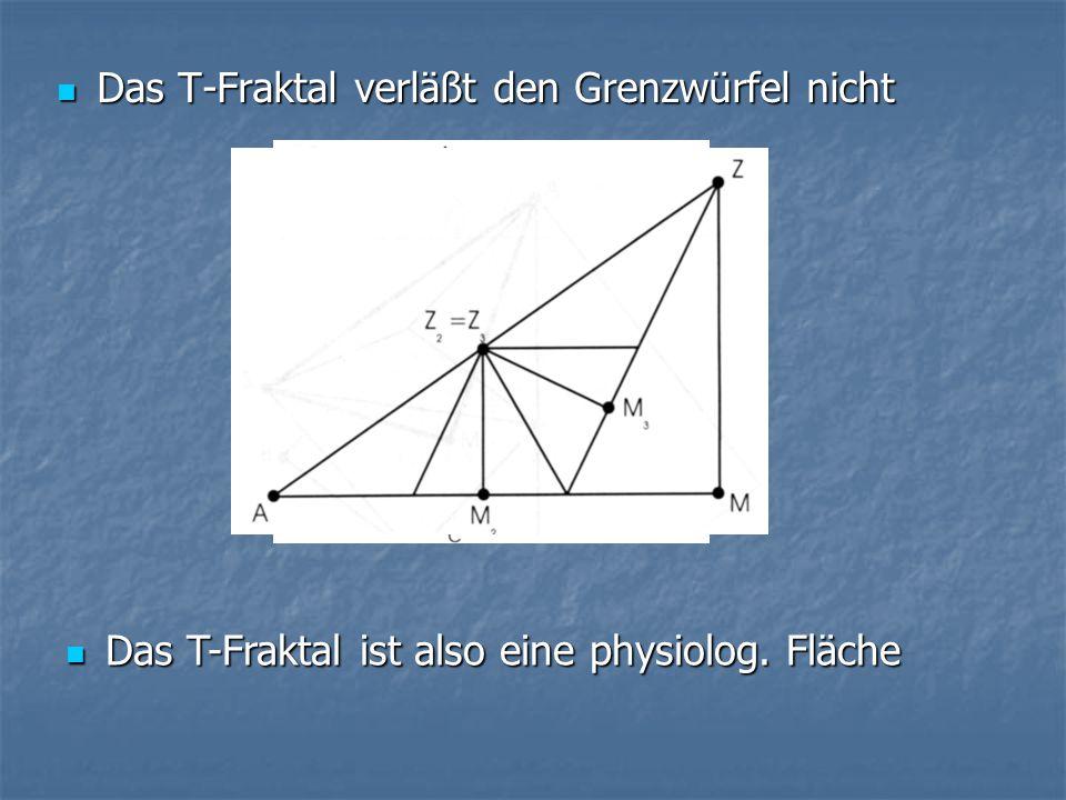 Das T-Fraktal verläßt den Grenzwürfel nicht Das T-Fraktal verläßt den Grenzwürfel nicht Das T-Fraktal ist also eine physiolog. Fläche Das T-Fraktal is