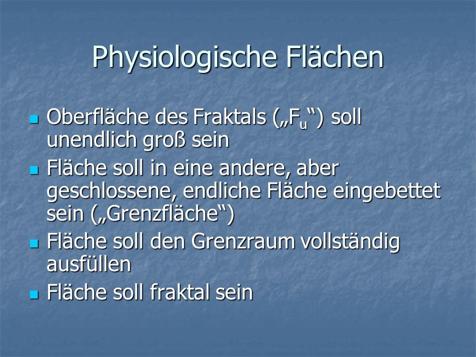 Physiologische Flächen Oberfläche des Fraktals (F u ) soll unendlich groß sein Oberfläche des Fraktals (F u ) soll unendlich groß sein Fläche soll in