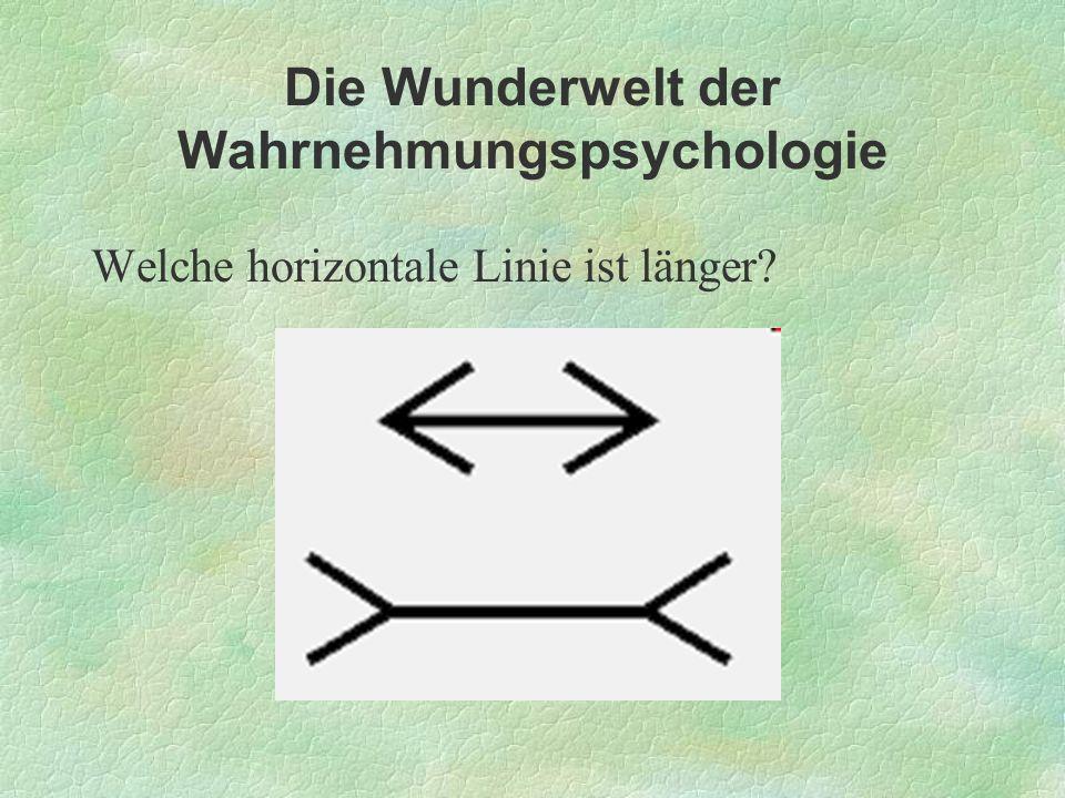 Welche horizontale Linie ist länger?