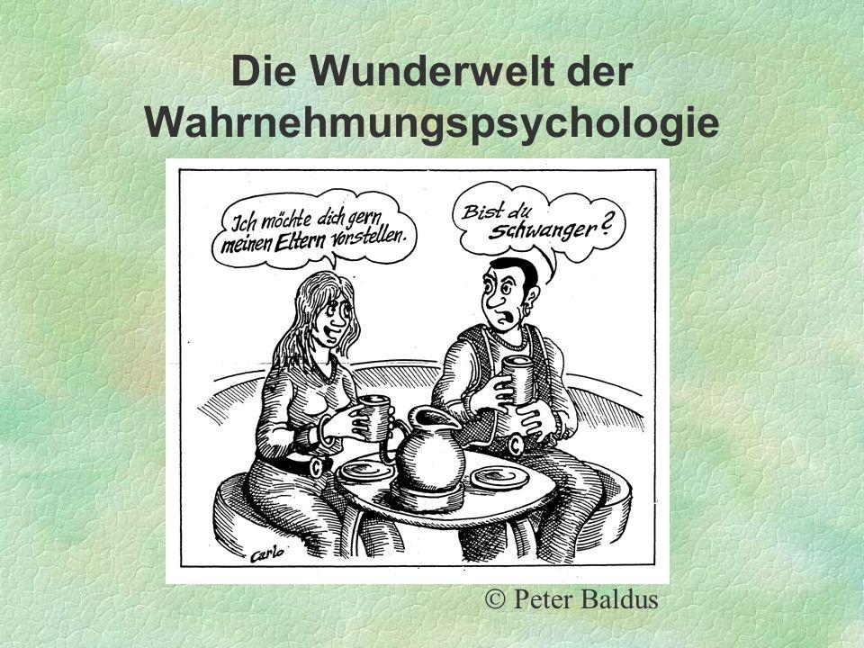 Die Wunderwelt der Wahrnehmungspsychologie Peter Baldus