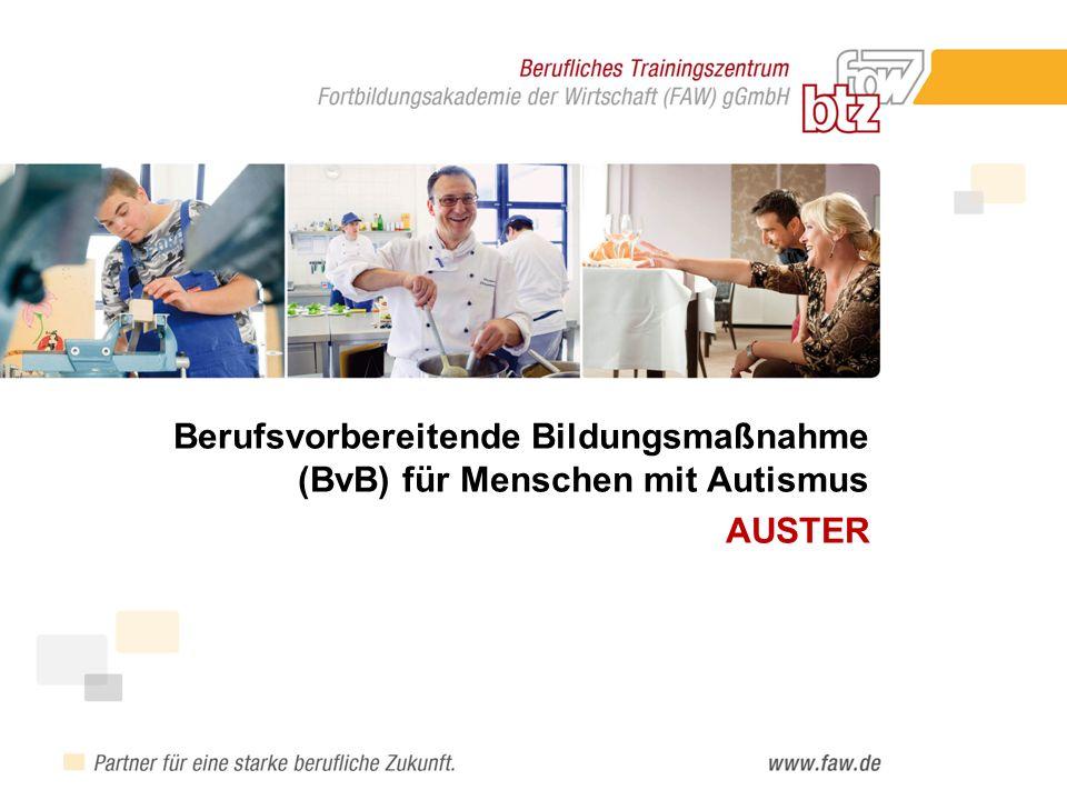 Berufsvorbereitende Bildungsmaßnahme (BvB) für Menschen mit Autismus AUSTER