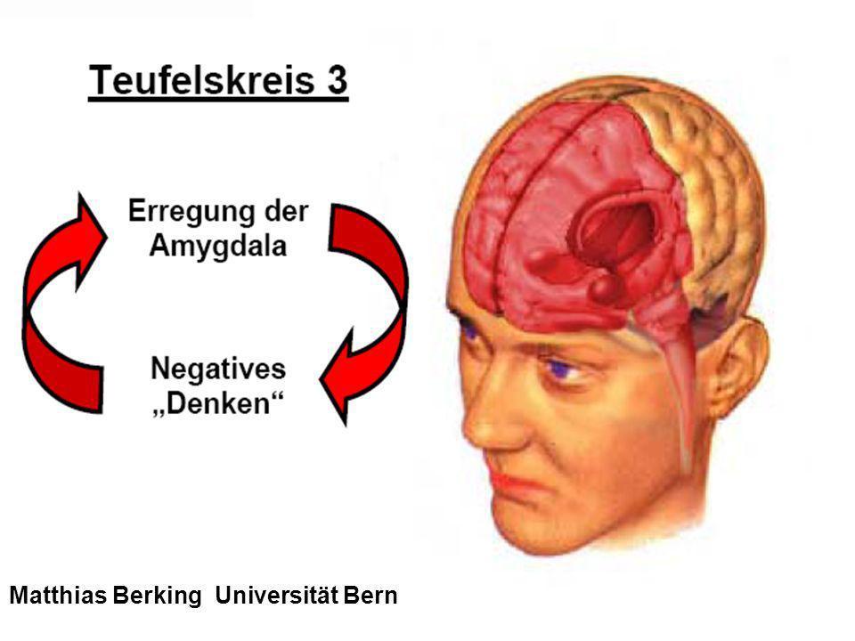 32 Matthias Berking Universität Bern
