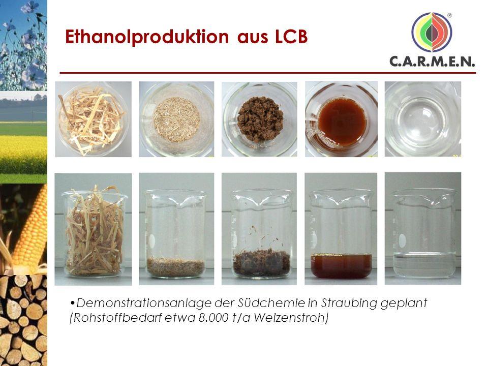 Ethanolproduktion aus LCB Demonstrationsanlage der Südchemie in Straubing geplant (Rohstoffbedarf etwa 8.000 t/a Weizenstroh)
