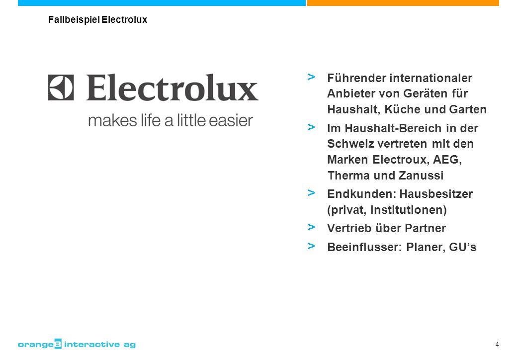 4 > Führender internationaler Anbieter von Geräten für Haushalt, Küche und Garten > Im Haushalt-Bereich in der Schweiz vertreten mit den Marken Electr