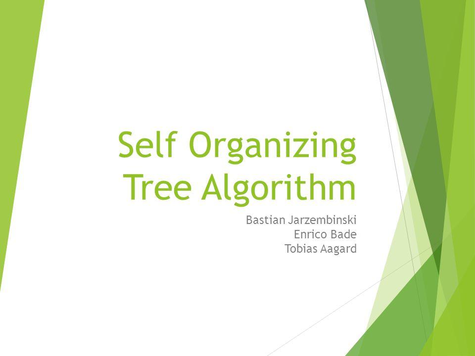 Self Organizing Tree Algorithm Bastian Jarzembinski Enrico Bade Tobias Aagard