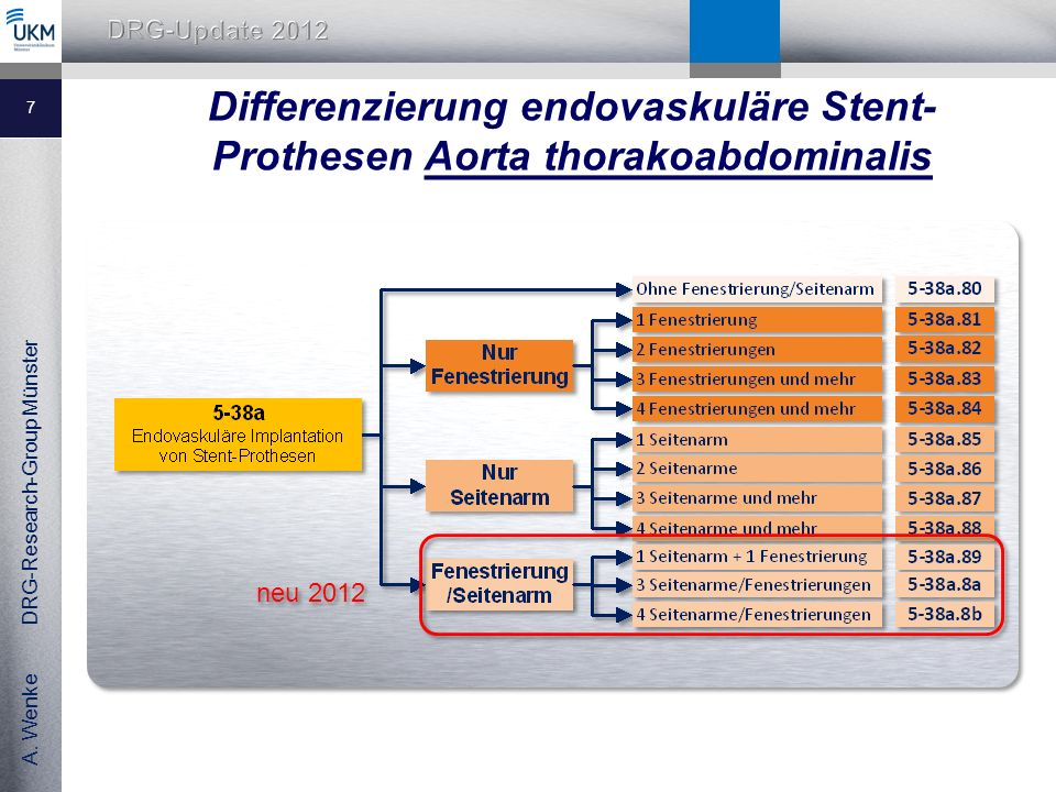 A.Wenke DRG-Research-Group Münster Was ist was bei den Aortenstents??.